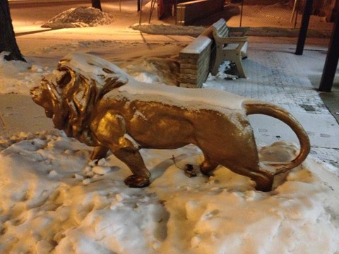 The snow covered Lion in front of the Downtown Training Center at night.